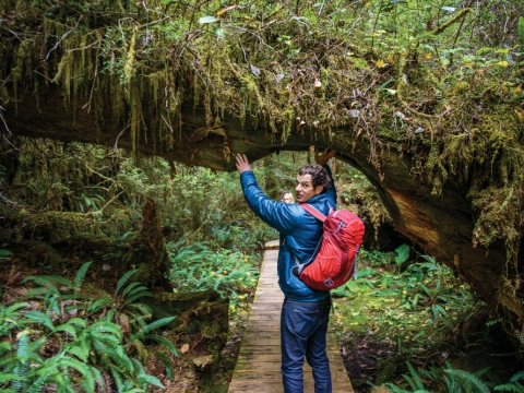 Off the Beaten Path — Clayoquot Wilderness Resort