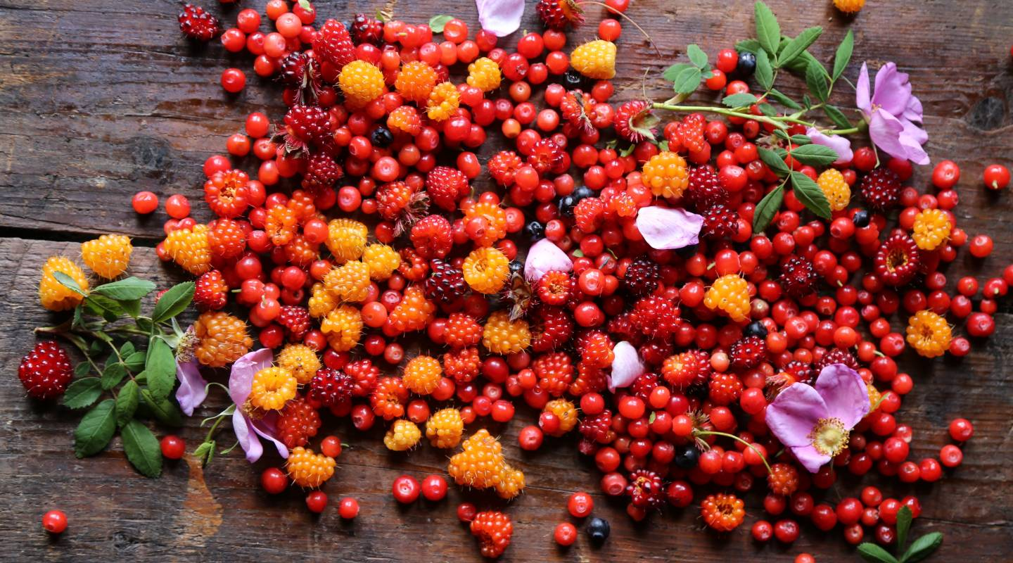Foraged berries